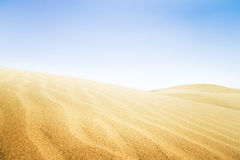 Sand dunes in sunny day. Royalty Free Stock Photos