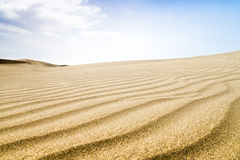 Sand dunes in sunny day. Royalty Free Stock Photo