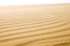 Sand dunes in sunny day. Stock Photo