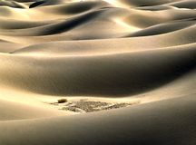 Sand dunes at sunrise Royalty Free Stock Images