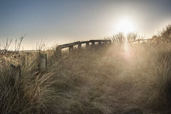 Sand Dunes at Sunrise. A path through the sand dunes just as the sun is rising Stock Photography