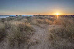 Sand Dunes at Sunrise. A view over the sand dunes just as the sun is rising Royalty Free Stock Photo