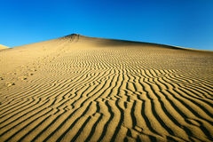 Sand dunes on the sunset Royalty Free Stock Images