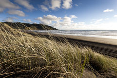 Sand Dunes at Sunset Beach Royalty Free Stock Photos