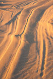 Sand dunes at sunset Royalty Free Stock Photography