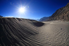 Sand dunes with sunshine Stock Photos