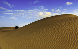 Sand Dunes Of Thar. One of rare picture of sand dunes of Thar desert with patterns on the sand un disturbed by human habitat Stock Photos