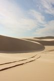 Sand dunes with tyre tracks. Desolate sand dunes with tyre tracks on sunny day Stock Photography
