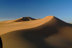 Sand Dunes of UAE Stock Image