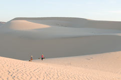 Sand dunes,Vietnam. The sand dunes in Vietnam stock photos