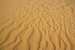 Sand Dunes in Vietnam Royalty Free Stock Image