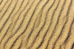 Sand on the dunes Royalty Free Stock Photo