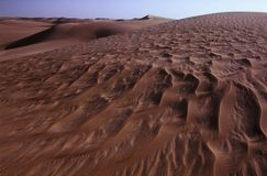 Sand Dunes of Western Desert Royalty Free Stock Images