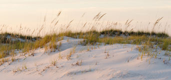 Sand Dunes in the Wind Stock Photo
