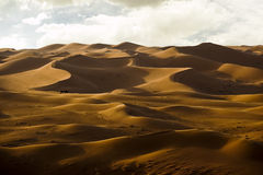 Sand dunes. The wind shape the graceful curve of sand Royalty Free Stock Photography