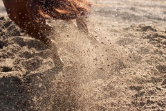 Sand and dust behind horse hooves Royalty Free Stock Photo