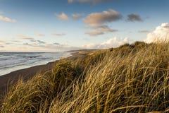 Sand dyner på solnedgångstranden Royaltyfri Bild
