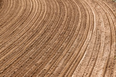 Sand Curved Track Grooves Stock Photography