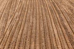 Sand-Erde-Spur-Nuten Lizenzfreie Stockfotos