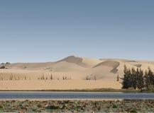 sand för dynmuine Fotografering för Bildbyråer