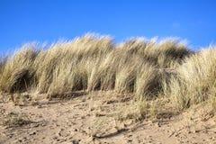 sand för högt område för dyn dynamisk Royaltyfria Bilder
