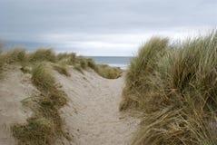 sand för högt område för dyn dynamisk Royaltyfria Foton