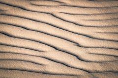 sand för krusningar för closeupdynmodell röd Royaltyfri Bild