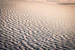 sand för krusningar för closeupdynmodell röd Royaltyfria Bilder