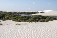 sand för maranheses för brazil dynlencois royaltyfri fotografi
