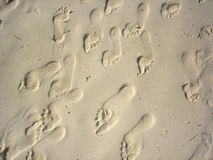 Sand feet. Several prints of feet in the sand Stock Image