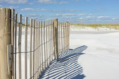 Sand Fence and Dunes at the Beach Royalty Free Stock Images