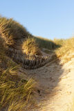 Sand Fence on Normandy Dune Stock Images