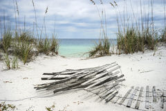 Sand Fence and Sea Oats at Florida Beach Stock Images