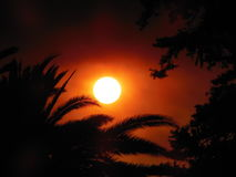 The Sand Fire Sun. This photo is not enhanced, but the product of the Sand Fire in Santa Clarita in Southern California.  I captured this photo from my backyard Royalty Free Stock Photos