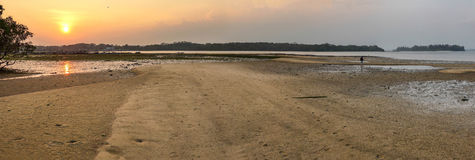 Sand Flats at Sunset Royalty Free Stock Image