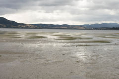 The Sand Flats. Walking along the sand flats at low tide Stock Photography