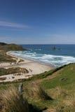 Sand fly bay. Otago Peninsula, Dunedin, south island, New Zealand Royalty Free Stock Photography