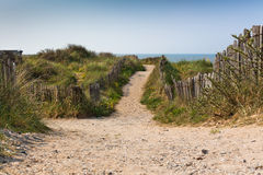 Sand footpath through dunes at the beach Royalty Free Stock Photos