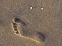 Sand footprint Royalty Free Stock Photography