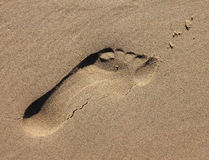 Sand Footprint Impression. Child's footprint in damp sand stock image