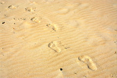 Sand footprints Stock Photo