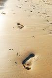 Sand footprints Royalty Free Stock Photos