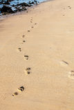 Sand footprints Royalty Free Stock Images