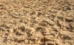 Sand with footprints stock photo