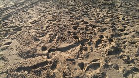 Sand footstep Stock Image