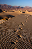 Sand footsteps Stock Photography