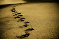 Sand, Footsteps, Footprints, Beach Stock Images