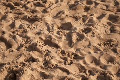 Sand with footsteps texture Stock Image