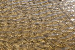 Sand formations. Beautiful sand formations have emerged at sea Stock Photography