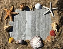 Sand Frame with Sea Shells in wooden Planks Photo Royalty Free Stock Images